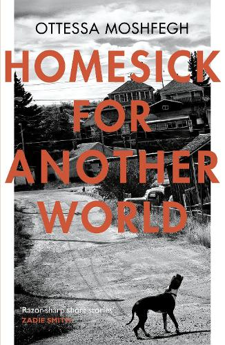 Homesick For Another World (Paperback)