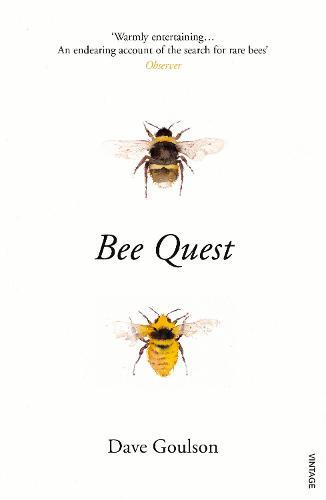 Bee Quest (Paperback)