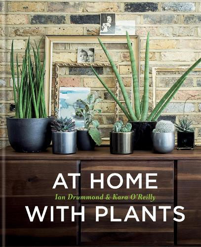 At Home with Plants (Hardback)
