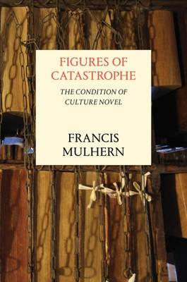Figures of Catastrophe: The Condition of Culture Novel (Hardback)