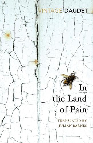 In the Land of Pain (Paperback)