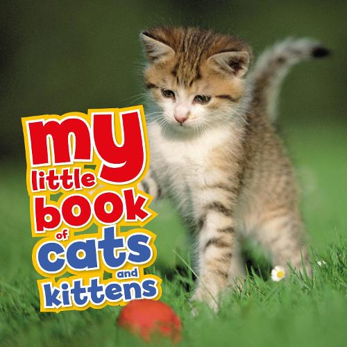 My Little Book of Cats and Kittens - My Little Book Of (Hardback)