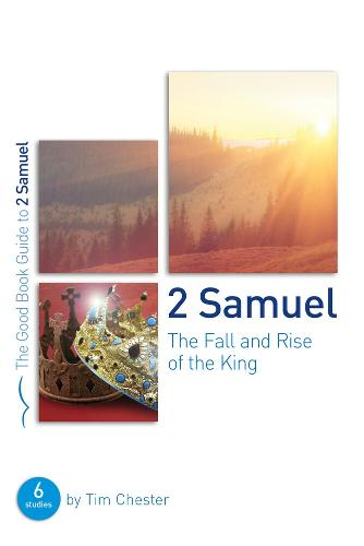 2 Samuel: The Fall and Rise of the King (Paperback)