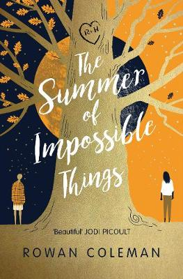 The Summer of Impossible Things (Hardback)