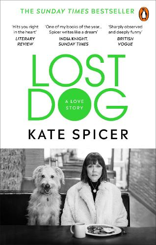 Lost Dog: A Love Story (Paperback)