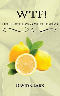 WTF! Life is Not Always What it Seems (Paperback)