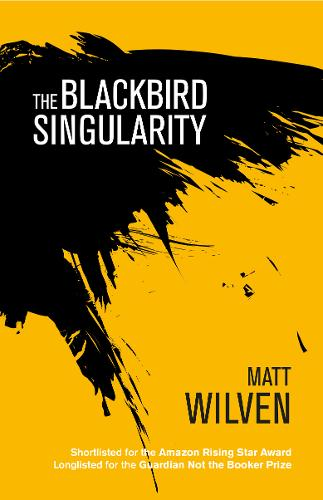 The Blackbird Singularity (Paperback)