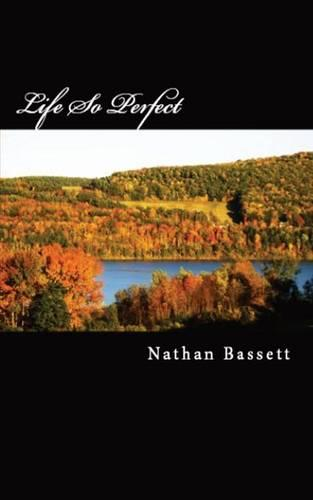 Life So Perfect (Paperback)
