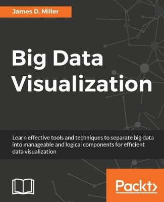 Big Data Visualization (Paperback)