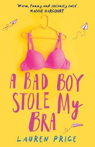 A Bad Boy Stole My Bra (Paperback)