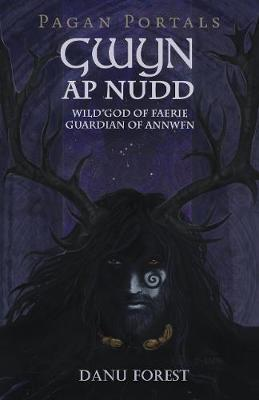 Pagan Portals - Gwyn ap Nudd - Wild god of Faery, Guardian of Annwfn (Paperback)
