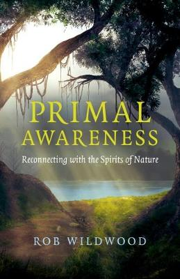 Primal Awareness: Reconnecting with the Spirits of Nature (Paperback)