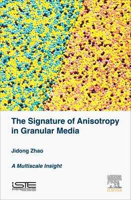 The Signature of Anisotropy in Granular Media: A Multiscale Insight (Hardback)