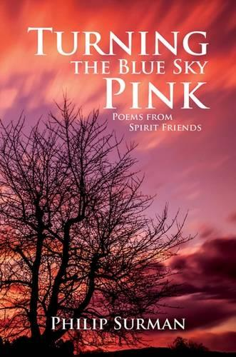 Turning the Blue Sky Pink (Paperback)