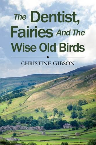 The Dentist, the Fairies and the Wise Old Birds (Hardback)