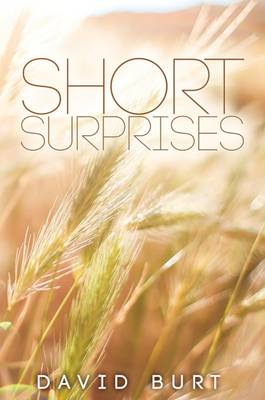 Short Surprises (Hardback)