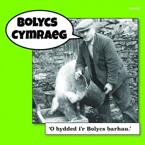 Bolycs Cymraeg (Paperback)