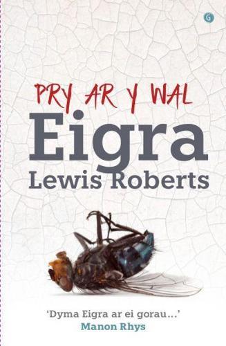 Pry ar y Wal (Paperback)