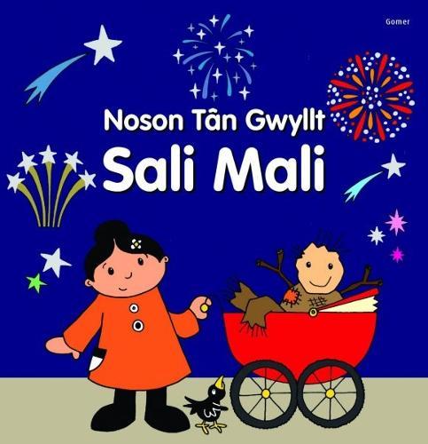 Noson Tan Gwyllt Sali Mali (Hardback)