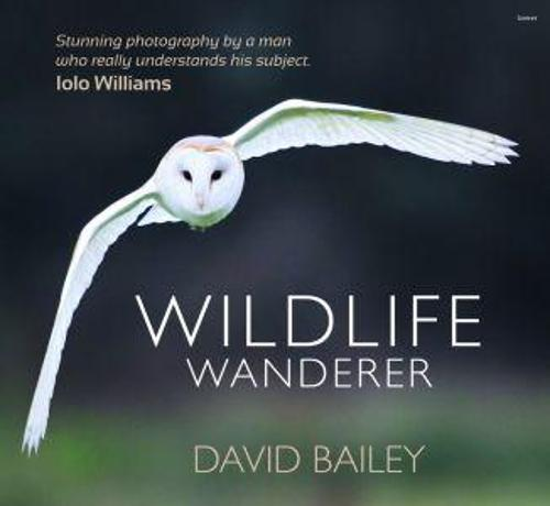 Wildlife Wanderer (Hardback)