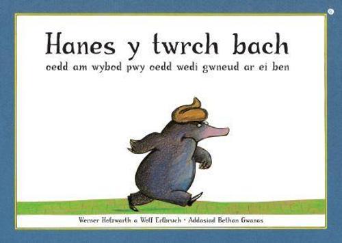 Hanes y Twrch oedd am Wybod Pwy oedd Wedi Gwneud ar ei Ben (Paperback)