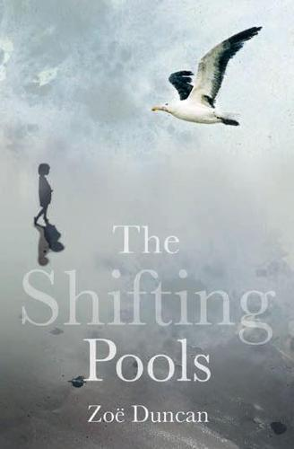 The Shifting Pools (Paperback)
