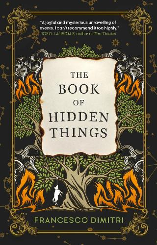 The Book of Hidden Things (Paperback)