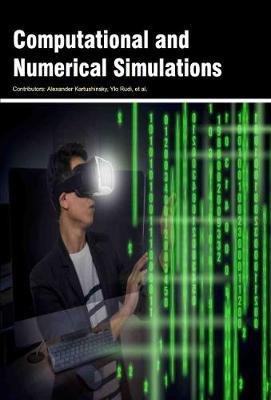 Computational and Numerical Simulations (Hardback)