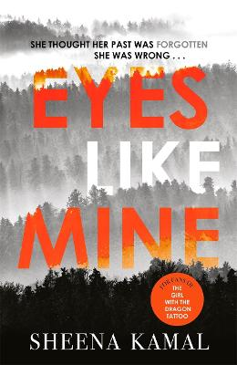 Eyes Like Mine: 'Utterly compelling . . . Will stay with you for a long, long time' Jeffery Deaver (Hardback)