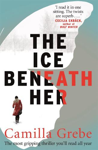 The Ice Beneath Her: The gripping psychological thriller for fans of I LET YOU GO (Paperback)