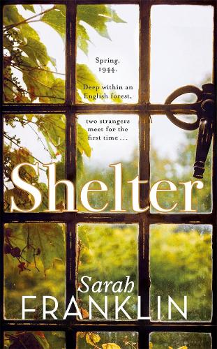 Shelter: `One of 2017's hottest debuts' - your 2018 MUST READ! (Hardback)