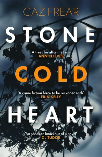 Stone Cold Heart (Paperback)