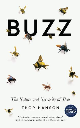 Buzz: The Nature and Necessity of Bees (Hardback)