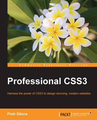 Professional CSS3 (Paperback)