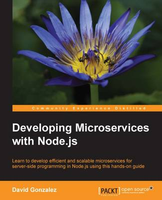 Developing Microservices with Node.js (Paperback)