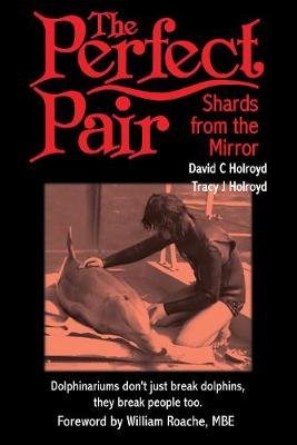 The Perfect Pair: Shards from the Mirror (Paperback)