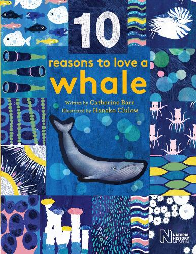 10 Reasons to Love a... Whale - 10 reasons to love a... (Hardback)