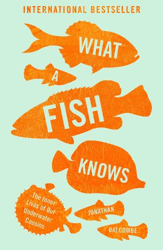 What a Fish Knows: The Inner Lives of Our Underwater Cousins (Paperback)