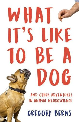 What It's Like to Be a Dog: And Other Adventures in Animal Neuroscience (Hardback)