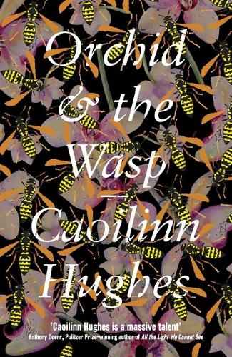 Orchid & the Wasp (Hardback)