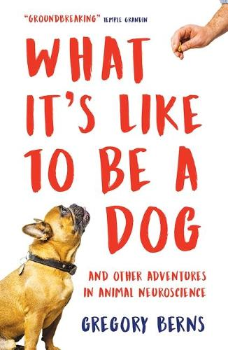 What It's Like to Be a Dog: And Other Adventures in Animal Neuroscience (Paperback)