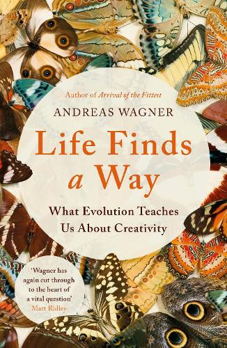 Life Finds a Way: What Evolution Teaches Us About Creativity (Paperback)