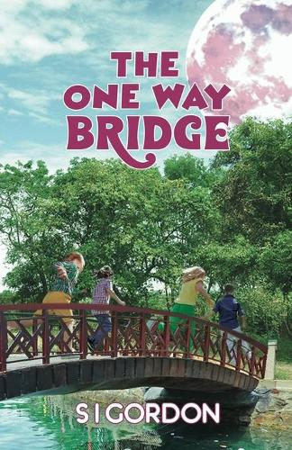 The One Way Bridge (Paperback)