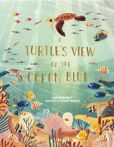 A Turtle's View of the Ocean Blue (Hardback)