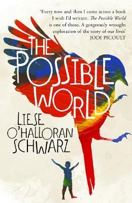 The Possible World (Hardback)