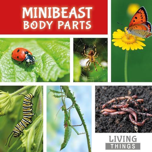 Minibeast Body Parts - Living Things (Hardback)