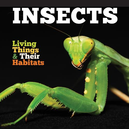 Insects - Living Things and Their Habitats (Hardback)