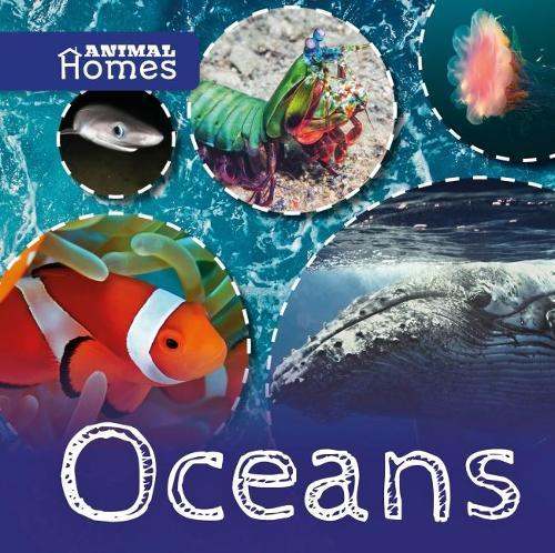 Animal Homes: Oceans - Animal Homes (Hardback)
