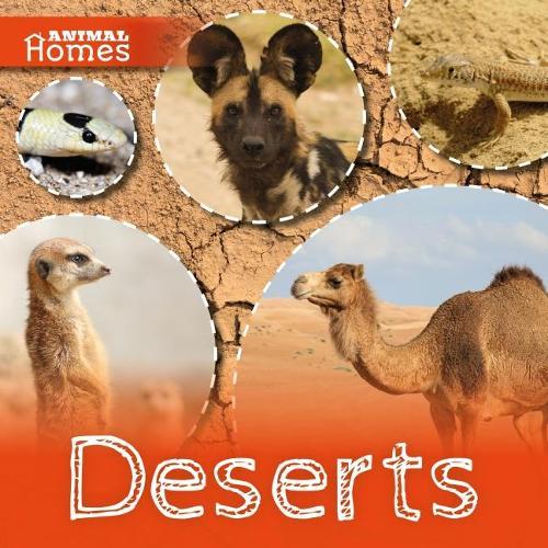 Deserts - Animal Homes (Hardback)