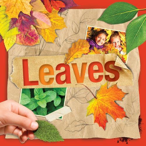 Leaves - Plant Parts (Hardback)